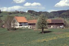 Eichschür, Ernst Bertschinger (im Buch)
