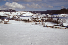 Blick vom Hasenrain im Winter