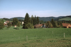 Holenstein