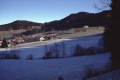 Ober- Wappenswil und Platte