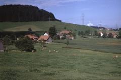 Ober- und Unter-Wappenswil