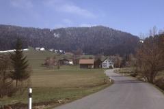 Blick Ritg. Oberwappenswil - Platten