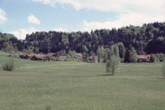 Schwarzweid, Platten, Oberwappenswil