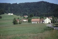 Platten, Holenstein, Oberwappenswil