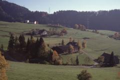 Schmärschür F. Jung - Schwarzweid - Platten