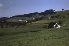alte Schmärschür - Maiwinkel - Vorderbettswil