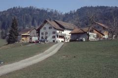 Schwarzweid