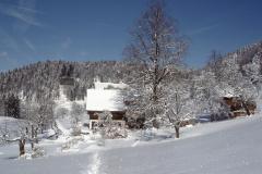 Aesch im Winter