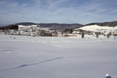 Wappenswilerried im Winter