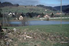 Stöckweiher - Bettswil - Allenberg