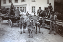 Holzen dazumal - Fuhrwerk Allenberg mit Fuhrmann Henri Fenner.
