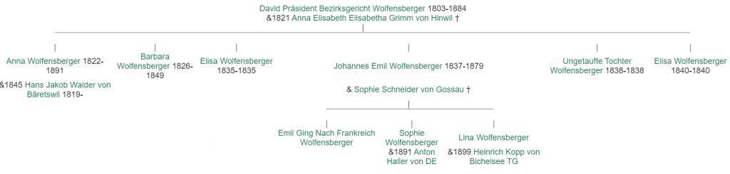 Stammbaum mit den Nachkommen von David Wolfensberger.