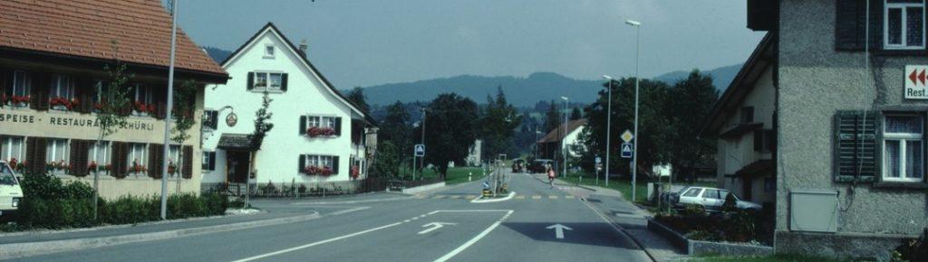 Wetzikerstrasse beim Schürli mit Blick Richtung Dorf und Allmenkette.