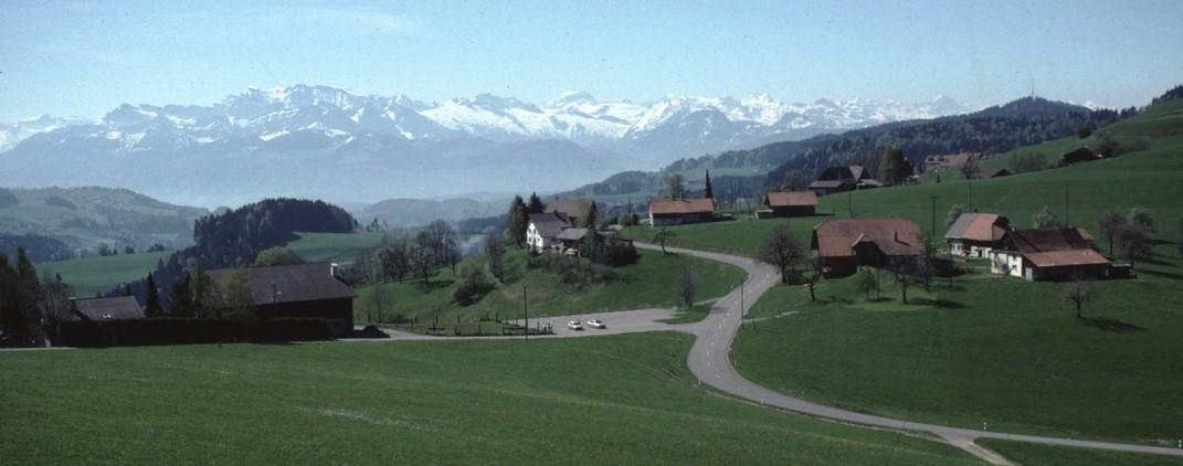 Ghöch mit Blick auf Glarner Alpen (Vrenelisgärtli und Tödi)