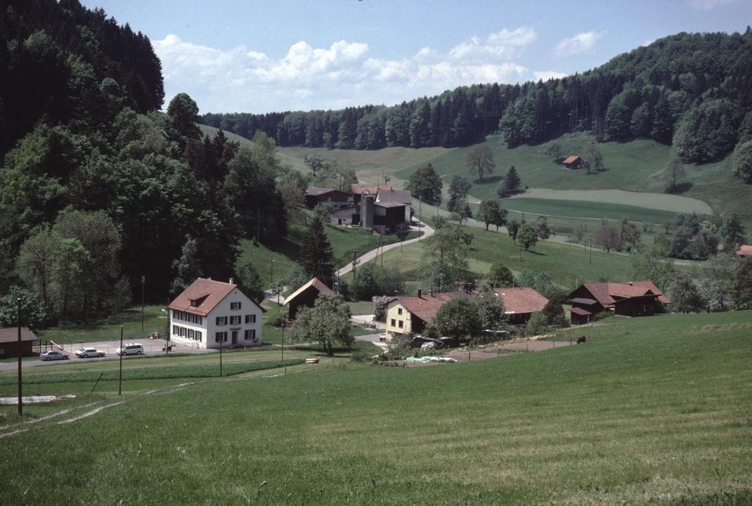 ehem. Schulhaus Tanne - Tanne - Obertanne - rechts Greifenberg  (JA/1998)